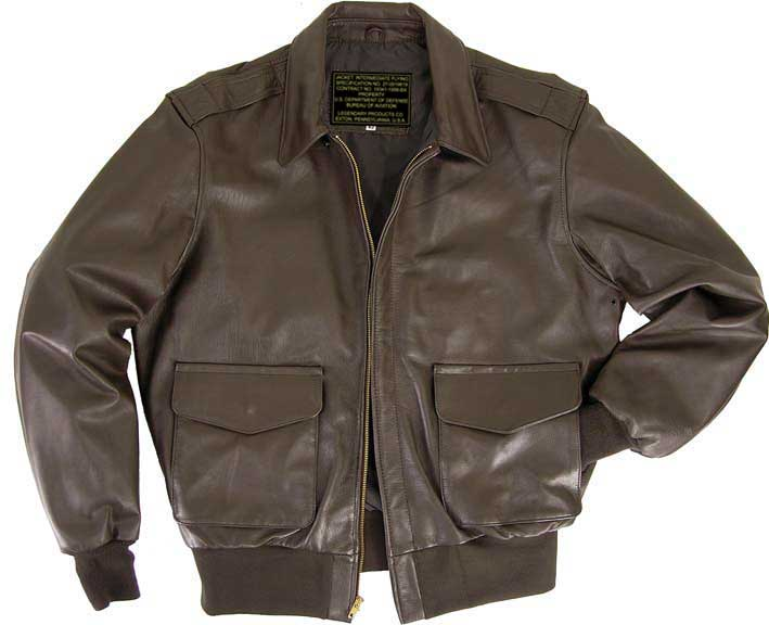 Air Force Flight Jackets Sale - JacketIn